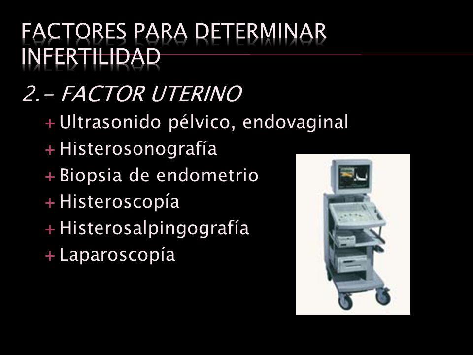 Factores para determinar infertilidad