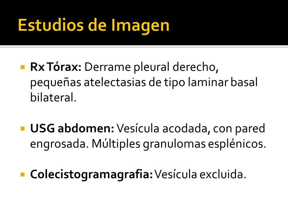 Estudios de Imagen Rx Tórax: Derrame pleural derecho, pequeñas atelectasias de tipo laminar basal bilateral.
