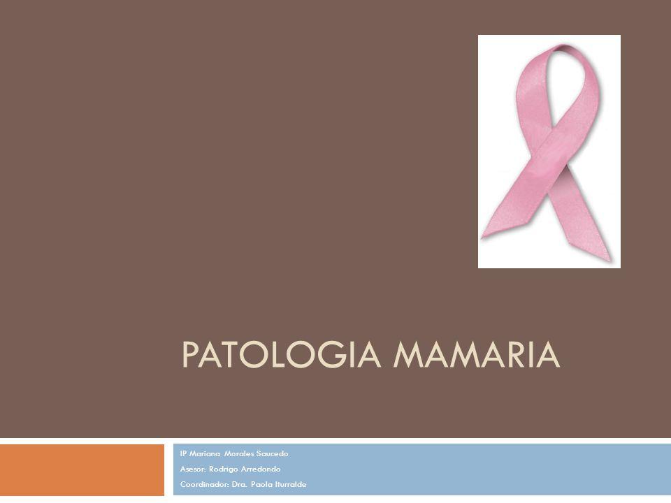 PATOLOGIA MAMARIA IP Mariana Morales Saucedo Asesor: Rodrigo Arredondo