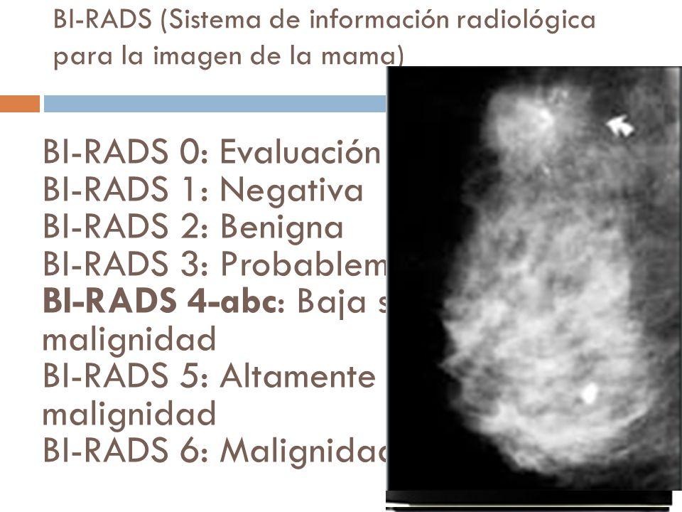 BI-RADS (Sistema de información radiológica para la imagen de la mama)