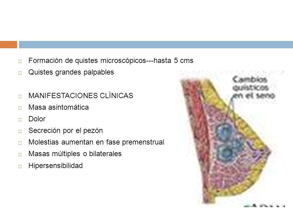Formación de quistes microscópicos---hasta 5 cms