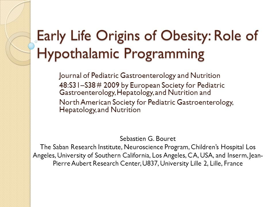 Early Life Origins of Obesity: Role of Hypothalamic Programming