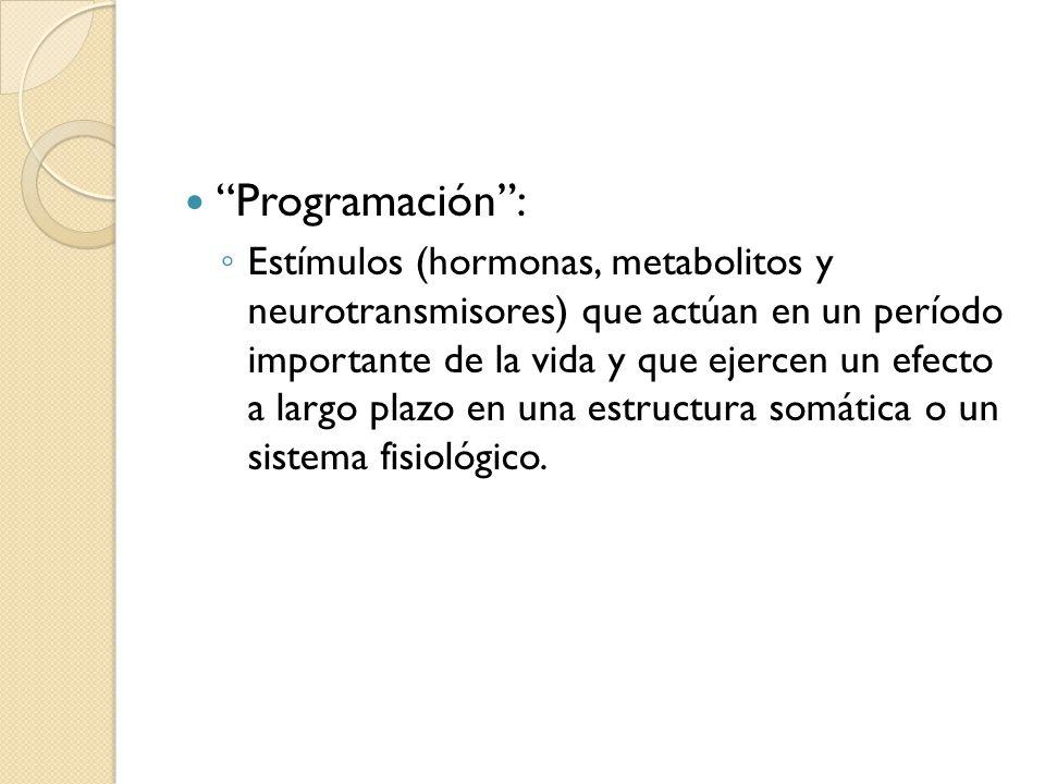 Programación :