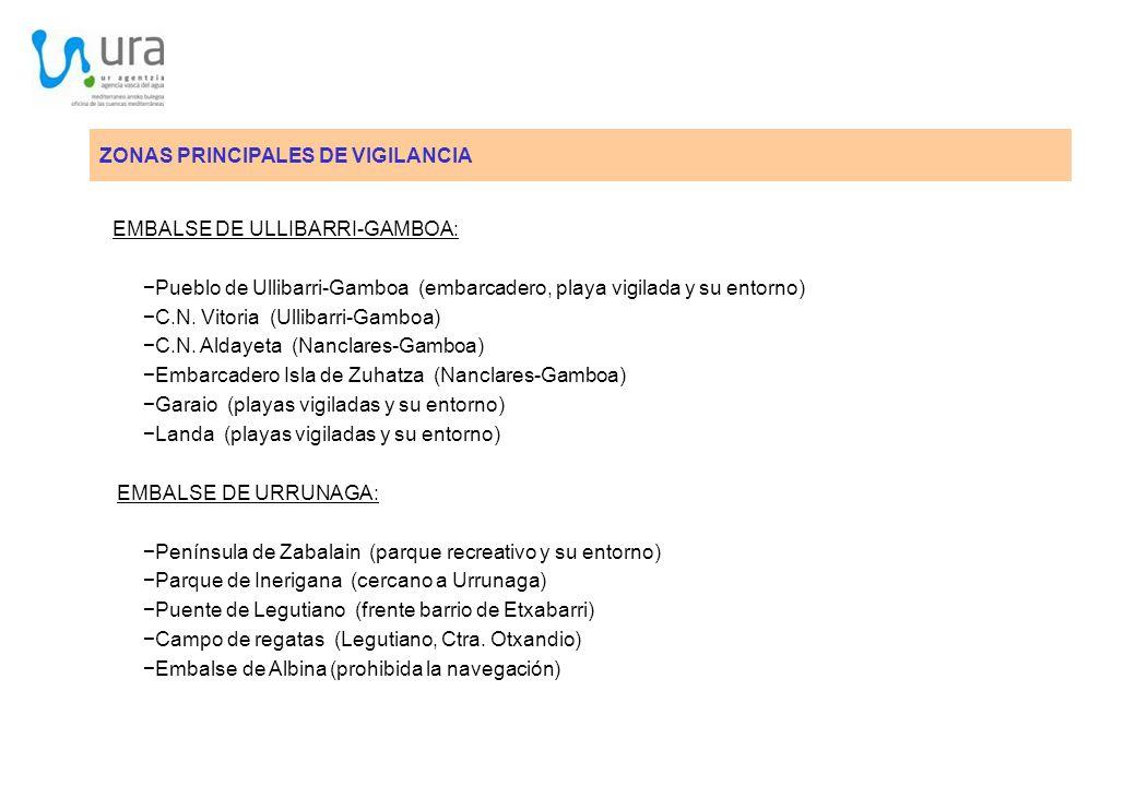 ZONAS PRINCIPALES DE VIGILANCIA