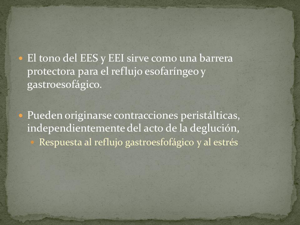 El tono del EES y EEI sirve como una barrera protectora para el reflujo esofaríngeo y gastroesofágico.