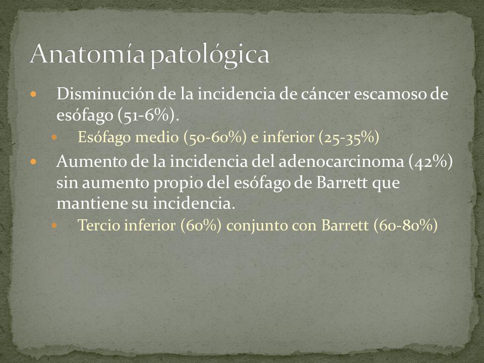 Anatomía patológica Disminución de la incidencia de cáncer escamoso de esófago (51-6%). Esófago medio (50-60%) e inferior (25-35%)