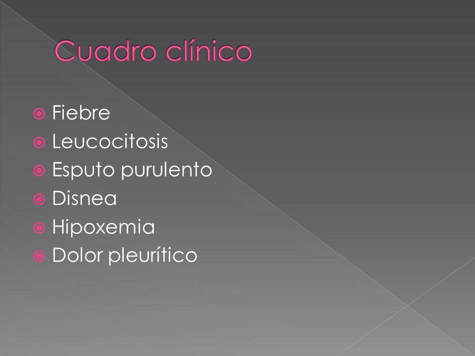 Cuadro clínico Fiebre Leucocitosis Esputo purulento Disnea Hipoxemia
