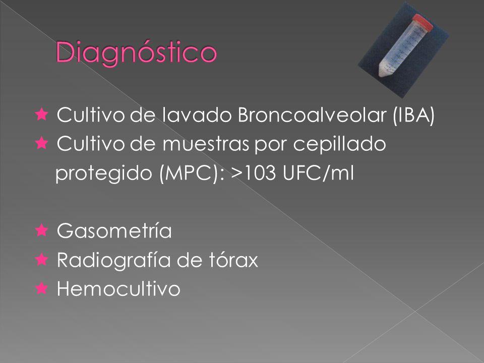 Diagnóstico  Cultivo de lavado Broncoalveolar (IBA)