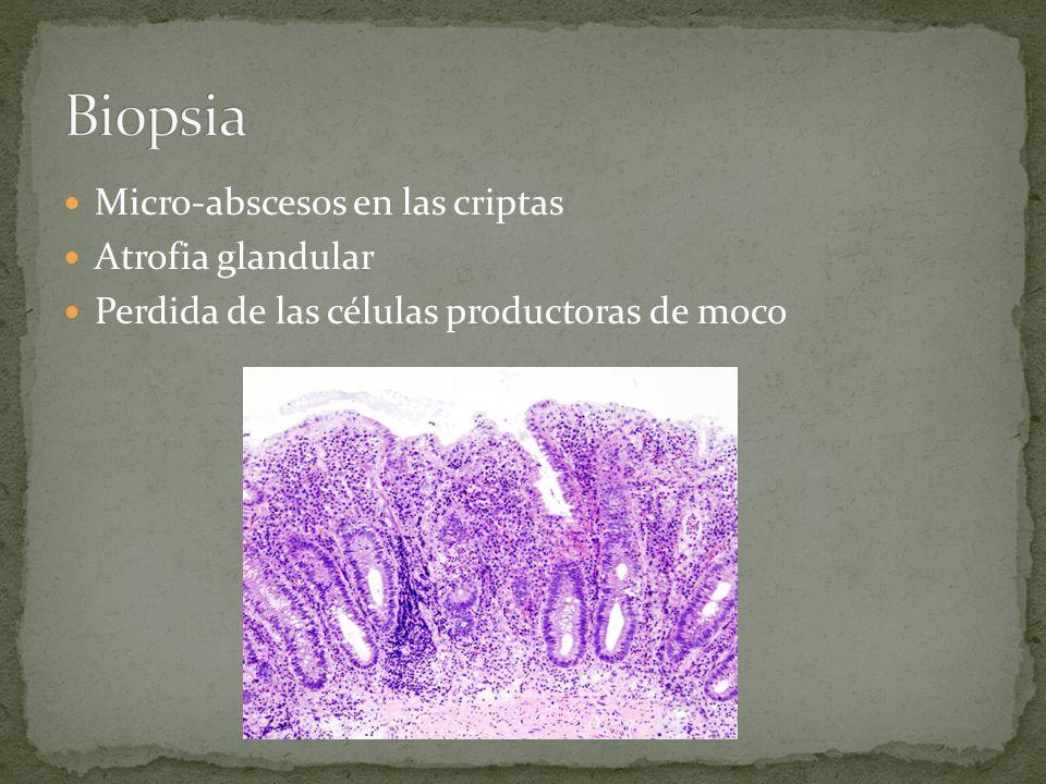 Biopsia Micro-abscesos en las criptas Atrofia glandular