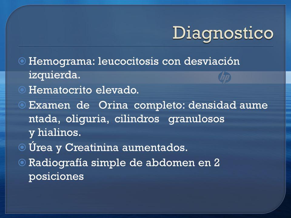 Diagnostico Hemograma: leucocitosis con desviación izquierda.