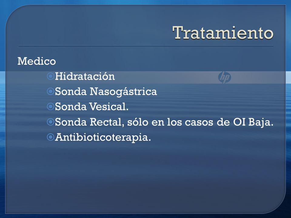 Tratamiento Medico Hidratación Sonda Nasogástrica Sonda Vesical.