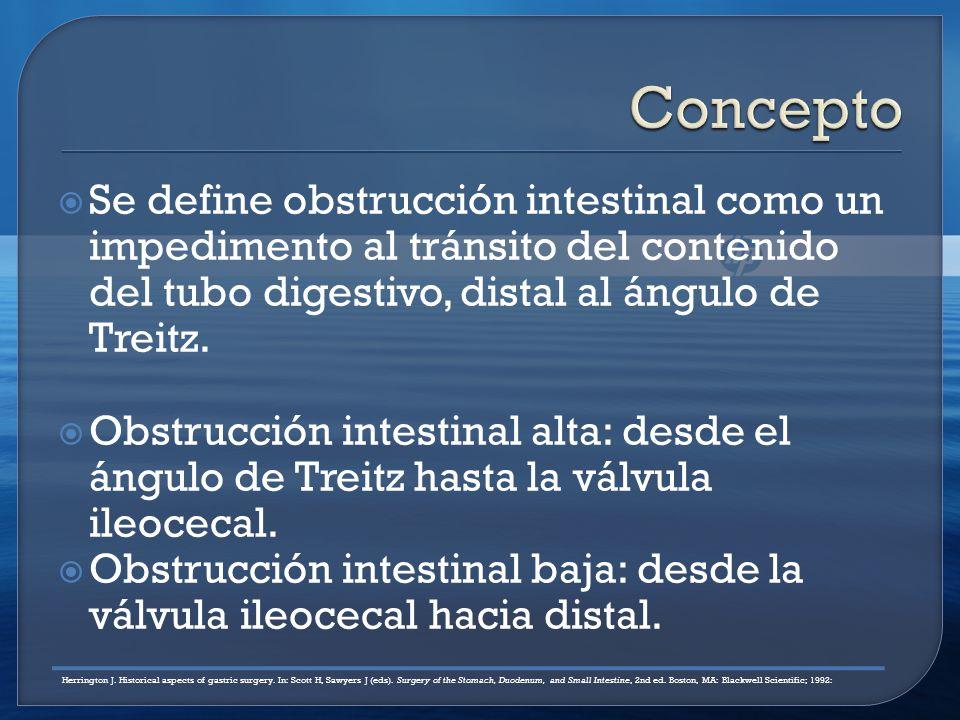 Concepto Se define obstrucción intestinal como un impedimento al tránsito del contenido del tubo digestivo, distal al ángulo de Treitz.