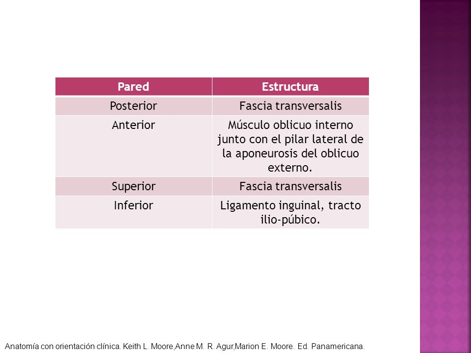 Ligamento inguinal, tracto ilio-púbico.