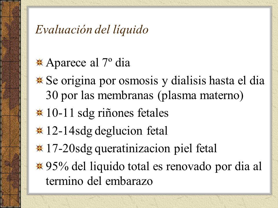 Evaluación del líquido