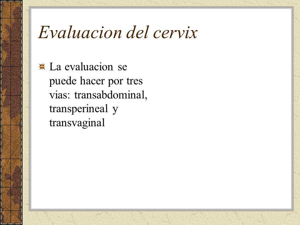 Evaluacion del cervix La evaluacion se puede hacer por tres vias: transabdominal, transperineal y transvaginal.
