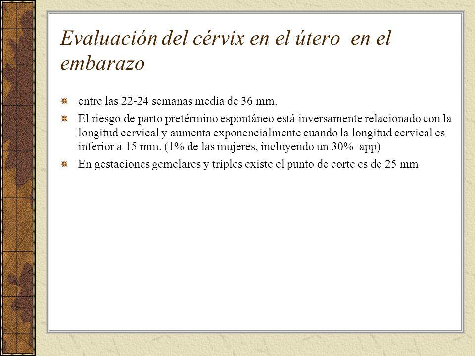 Evaluación del cérvix en el útero en el embarazo