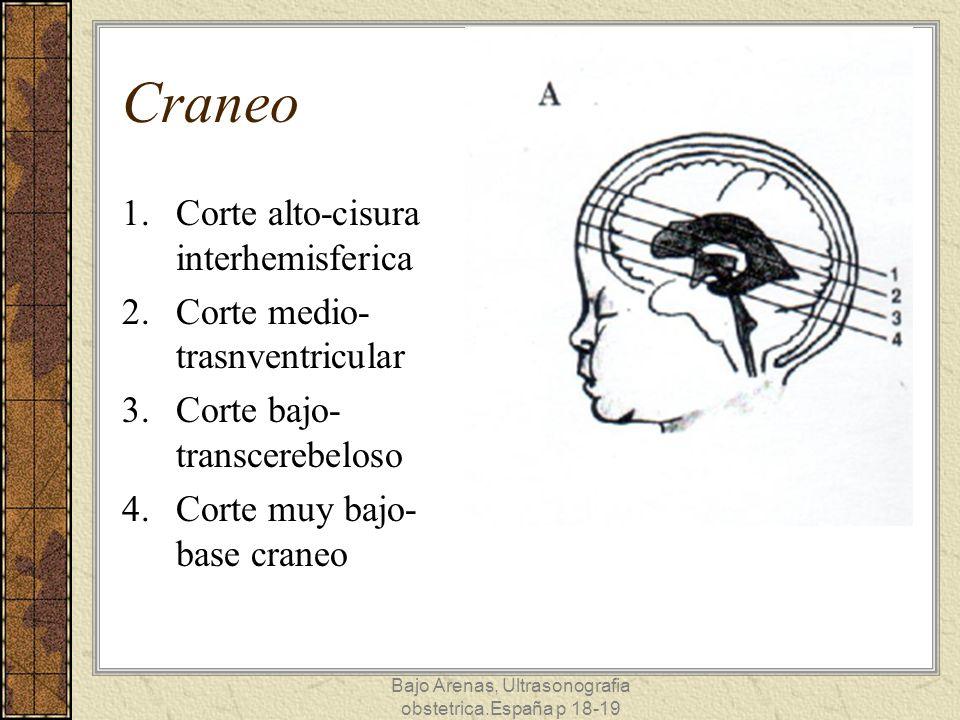 Bajo Arenas, Ultrasonografia obstetrica.España p 18-19