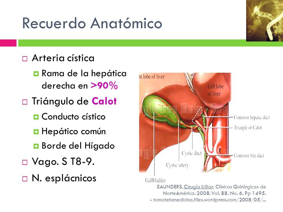 Contemporáneo Vesícula Biliar Triángulo De La Anatomía Calot ...