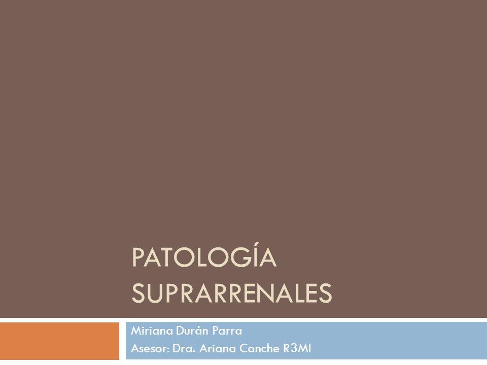 Patología suprarrenales