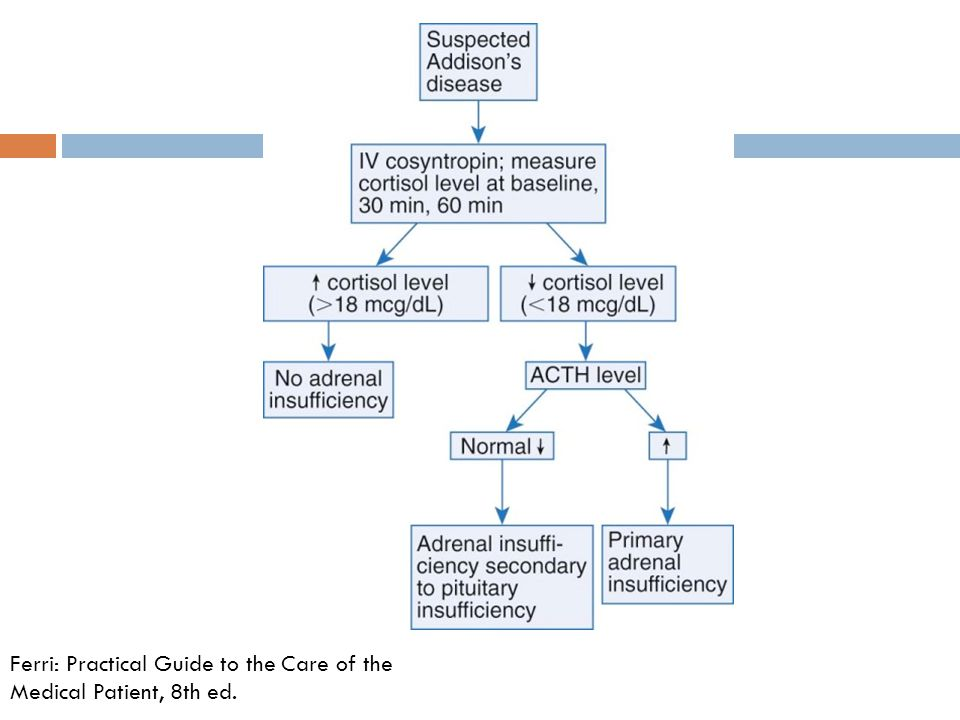 Ferri: Practical Guide to the Care of the Medical Patient, 8th ed.