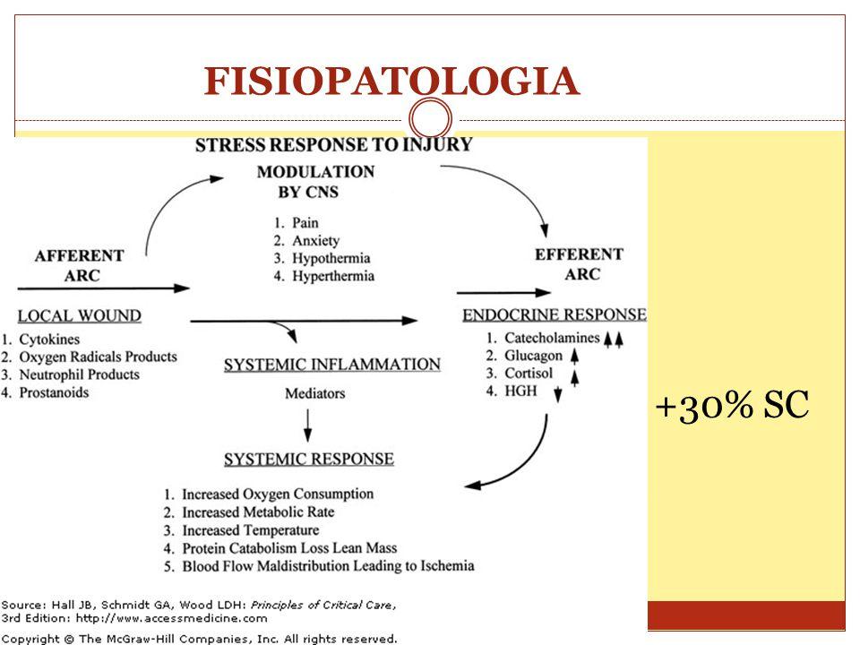 FISIOPATOLOGIA +30% SC