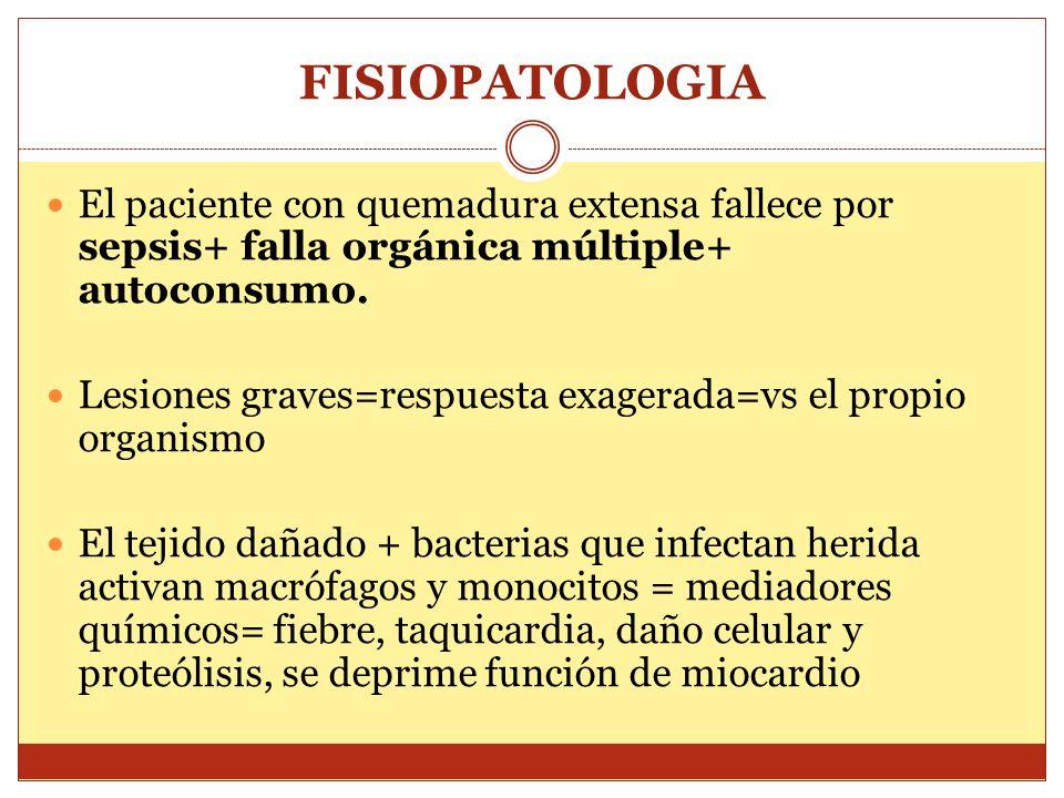 FISIOPATOLOGIA El paciente con quemadura extensa fallece por sepsis+ falla orgánica múltiple+ autoconsumo.