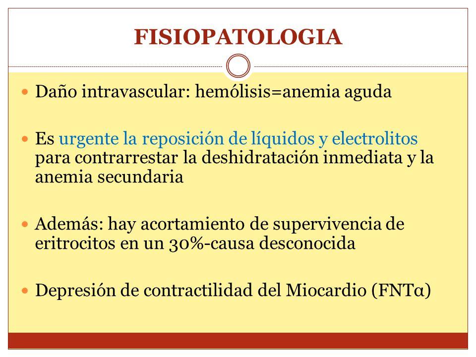 FISIOPATOLOGIA Daño intravascular: hemólisis=anemia aguda