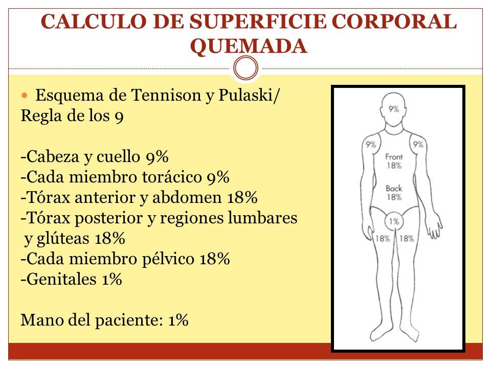 CALCULO DE SUPERFICIE CORPORAL QUEMADA