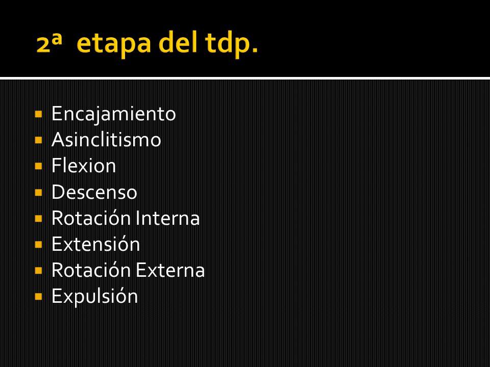 2ª etapa del tdp. Encajamiento Asinclitismo Flexion Descenso