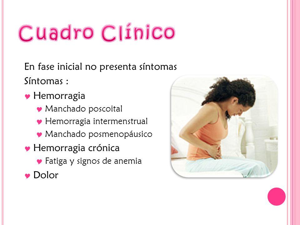 Cuadro Clínico En fase inicial no presenta síntomas Síntomas :