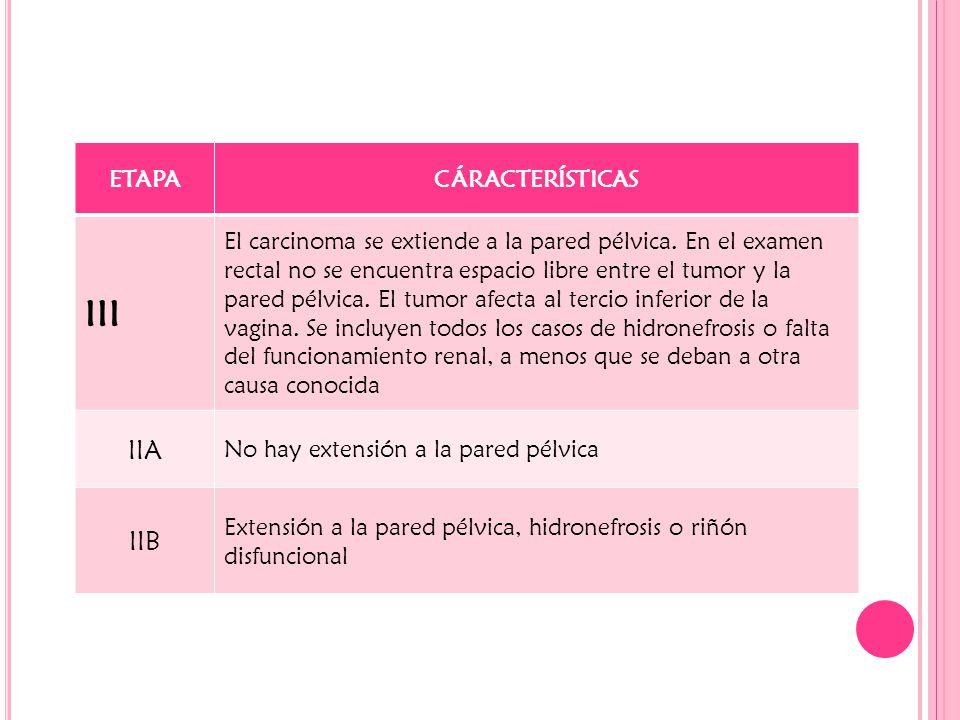 III IIA IIB ETAPA CÁRACTERÍSTICAS