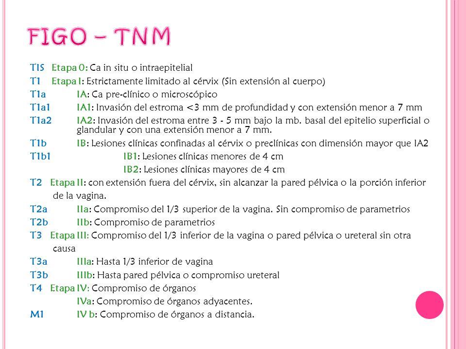 FIGO – TNM
