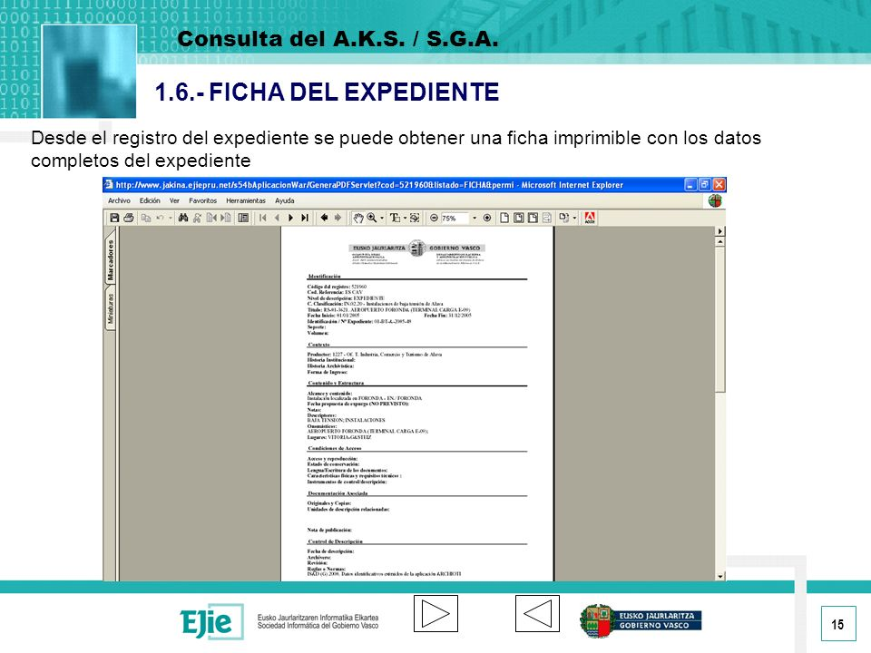 1.6.- FICHA DEL EXPEDIENTE Consulta del A.K.S. / S.G.A.