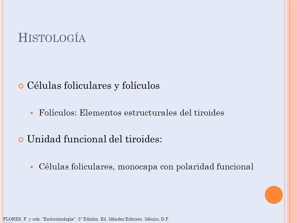 Histología Células foliculares y folículos