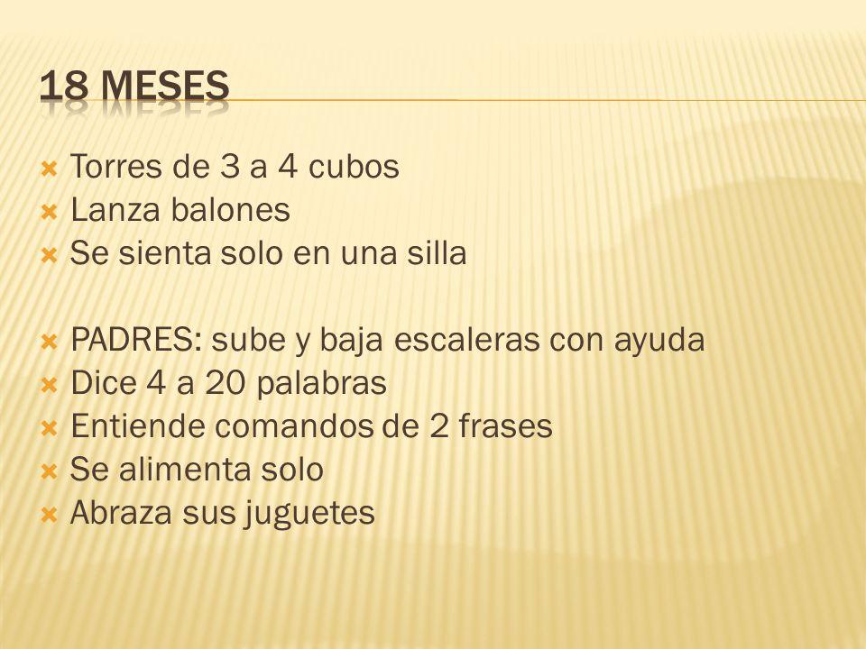 18 meses Torres de 3 a 4 cubos Lanza balones