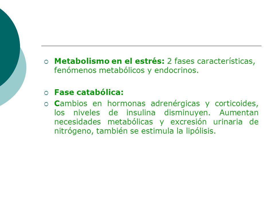 Metabolismo en el estrés: 2 fases características, fenómenos metabólicos y endocrinos.