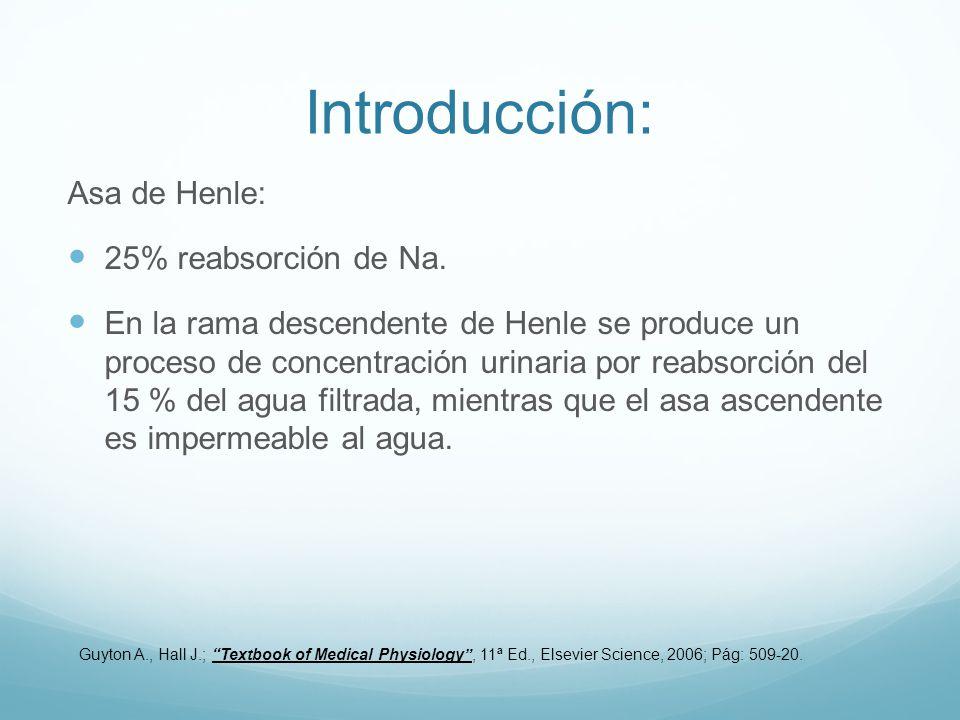 Introducción: Asa de Henle: 25% reabsorción de Na.