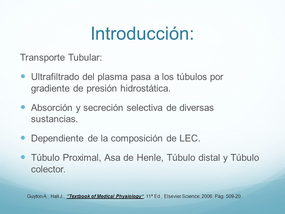 Introducción: Transporte Tubular: