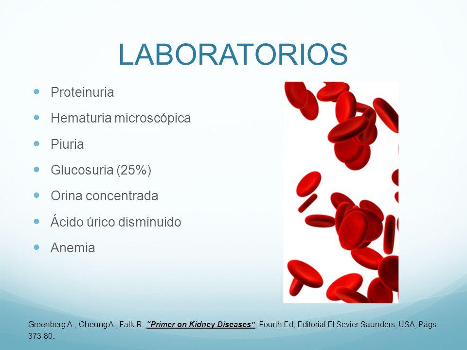 LABORATORIOS Proteinuria Hematuria microscópica Piuria