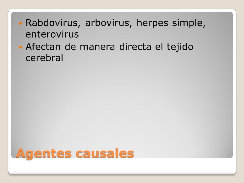 Agentes causales Rabdovirus, arbovirus, herpes simple, enterovirus