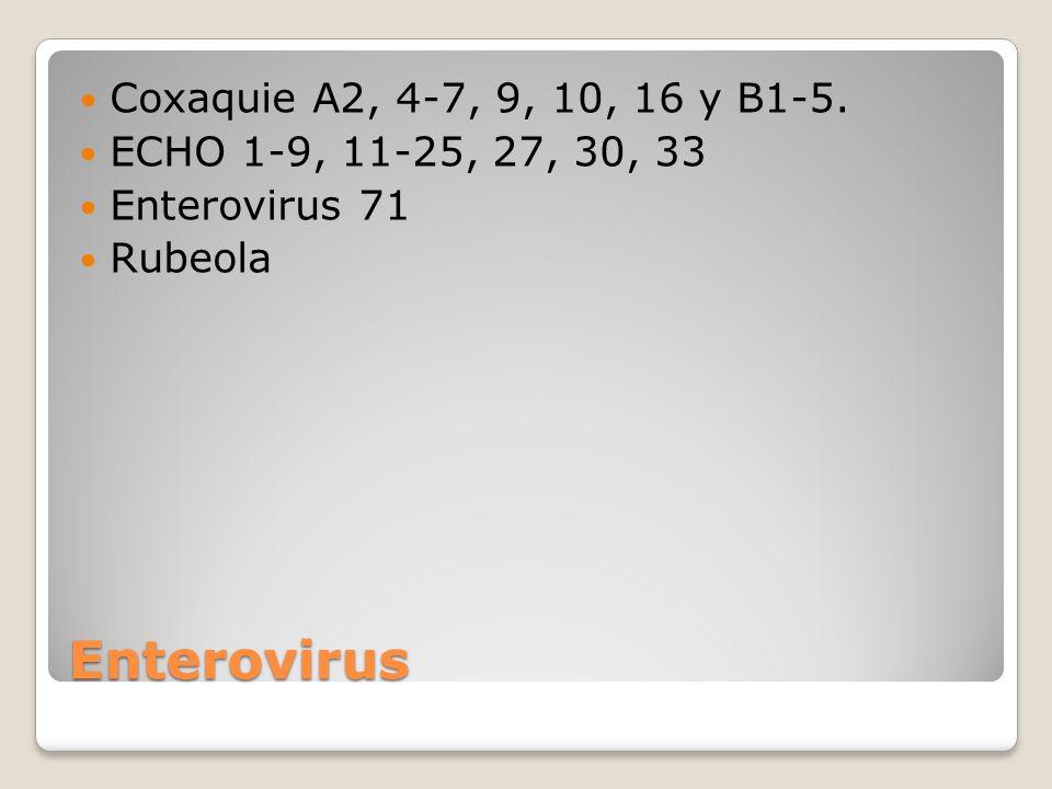 Enterovirus Coxaquie A2, 4-7, 9, 10, 16 y B1-5.