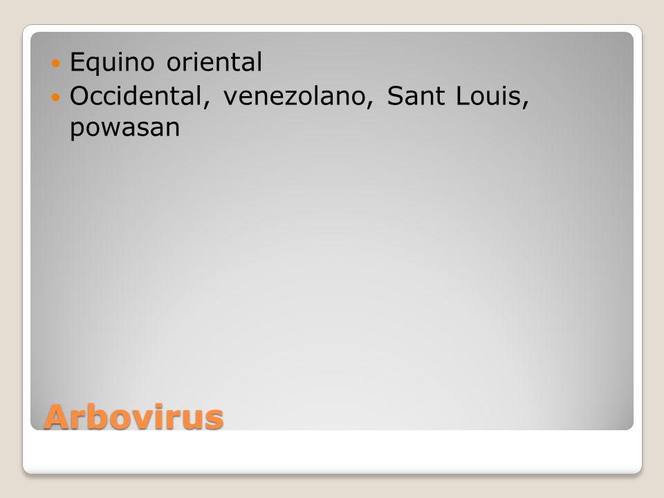 Equino oriental Occidental, venezolano, Sant Louis, powasan Arbovirus