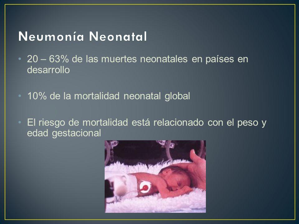 Neumonía Neonatal 20 – 63% de las muertes neonatales en países en desarrollo. 10% de la mortalidad neonatal global.