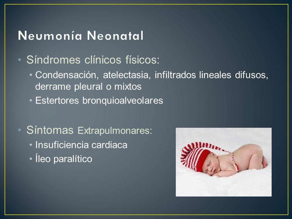 Neumonía Neonatal Síndromes clínicos físicos: