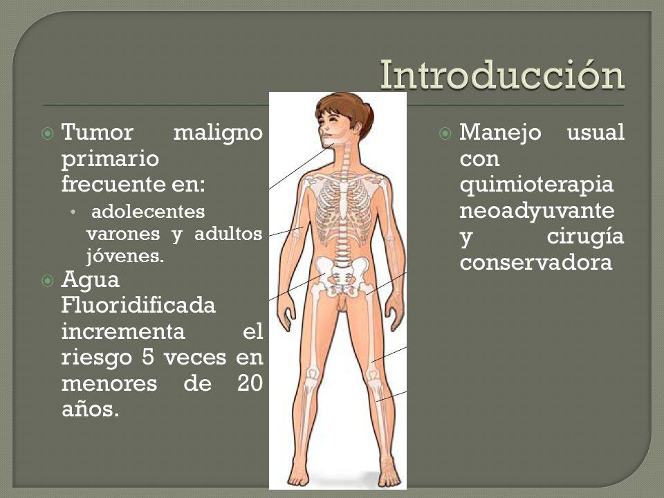 Introducción Tumor maligno primario frecuente en: