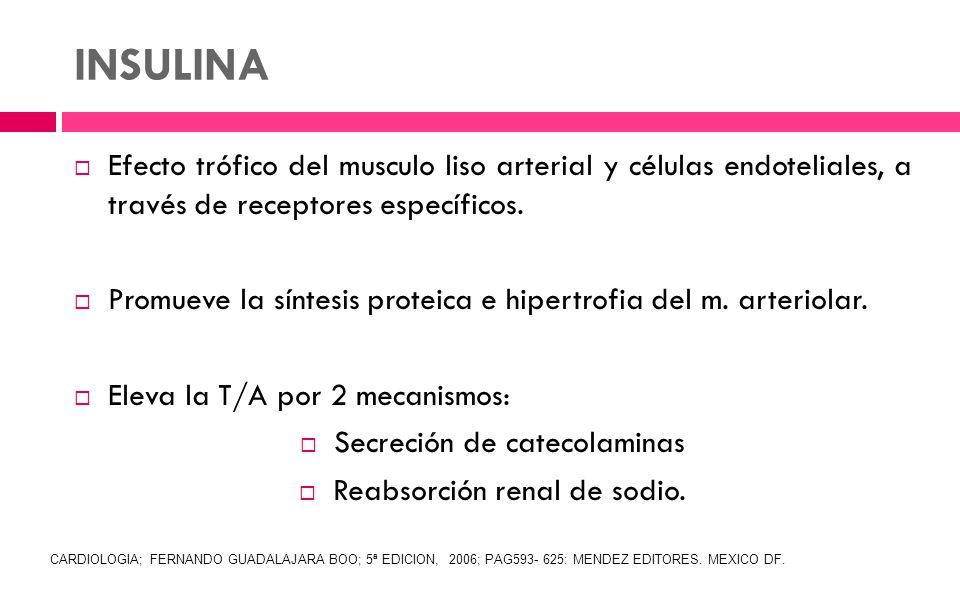 INSULINA Efecto trófico del musculo liso arterial y células endoteliales, a través de receptores específicos.