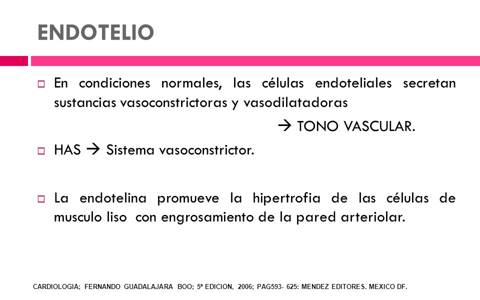 ENDOTELIO En condiciones normales, las células endoteliales secretan sustancias vasoconstrictoras y vasodilatadoras.