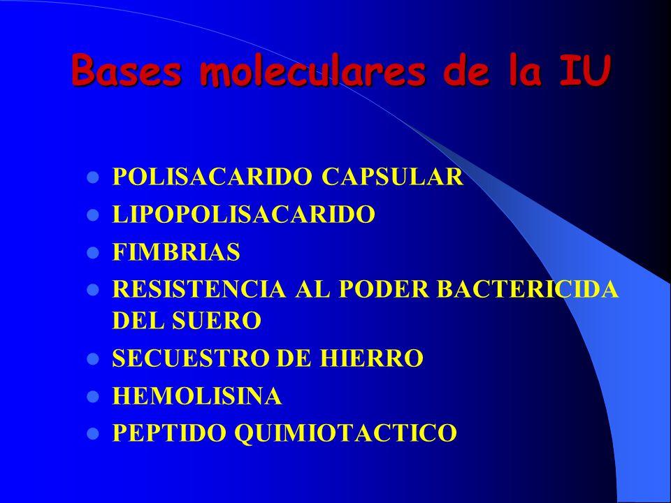 Bases moleculares de la IU