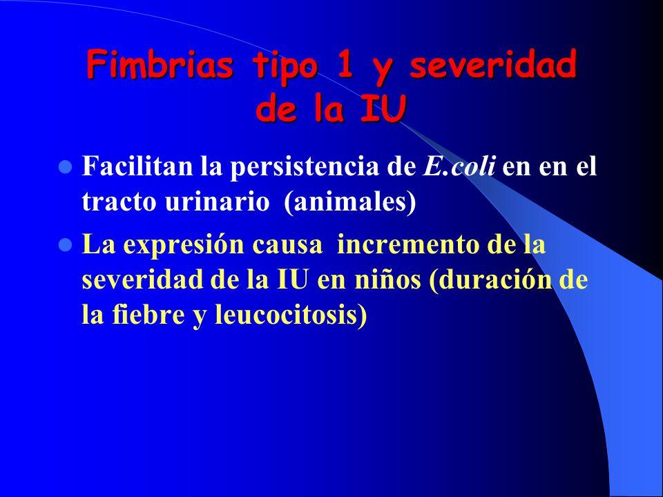 Fimbrias tipo 1 y severidad de la IU