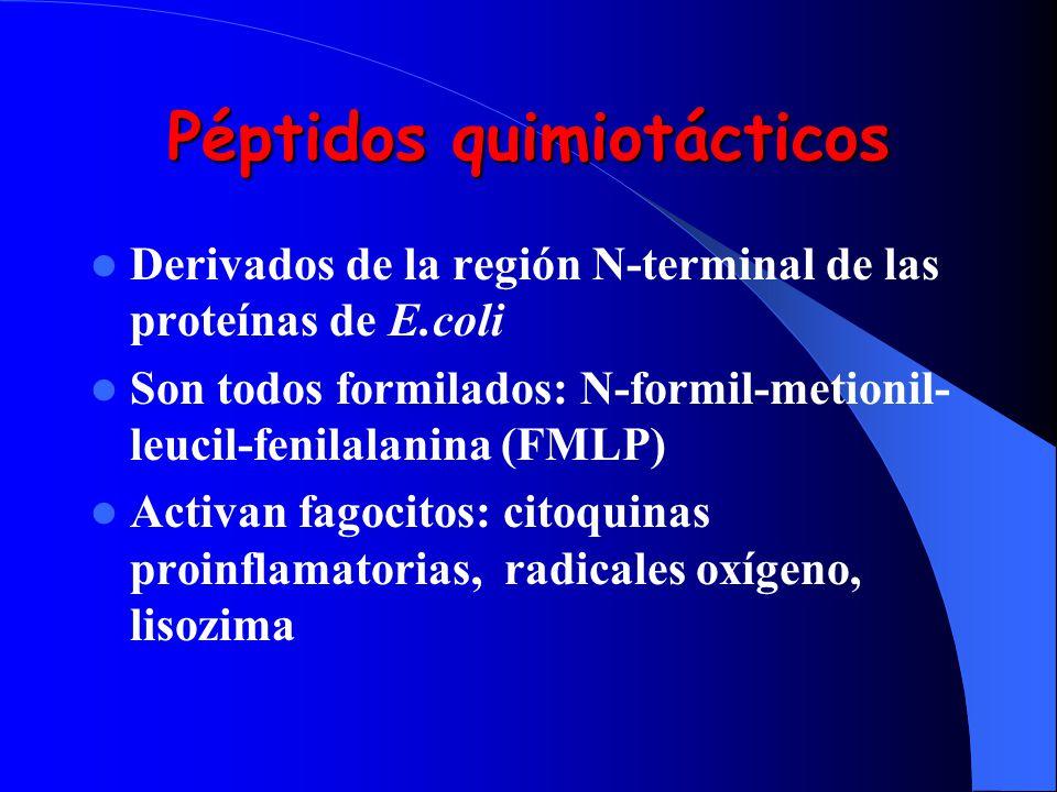 Péptidos quimiotácticos